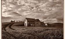Homestead Antique