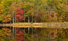 Fall Color Reflections Catskills