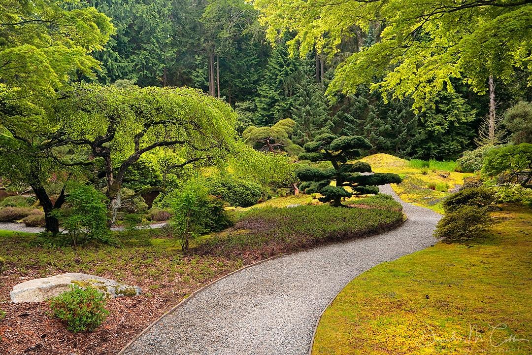 BRJGWA11SP Garden Path
