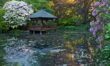 Japanese Garden Pond Hatley Castle
