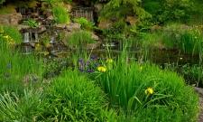 Oregon Gardens Cascade