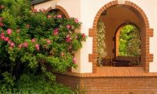 Rose & Arch