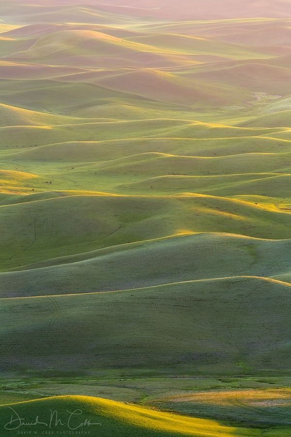 Palouse Hill Country